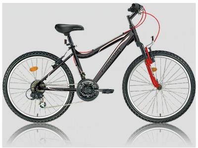 Велосипед Forward Twister 585 DW (2014)