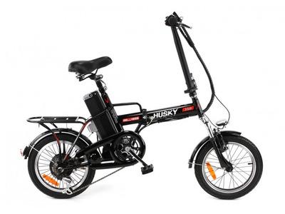 Велосипед Wellness Hasky (2015)