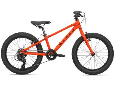 Велосипед Haro Flightline 20 Plus (2020)